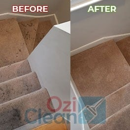 Carpet Cleaners Bedfordshire